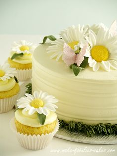 Daisy cake - believe it or not, those daisies aren't real. They are gum paste daisies. What a fabulous job.