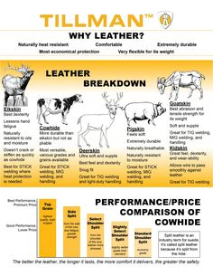 Leather welding gloves with cow split hideandfur moscow hide and fur tanning tutorial turn your critter the pros and cons of kangaroo leather white deer leather convertible shoulder TillmanAbout Deerskin … Leather Carving, Leather Tooling, Cowhide Leather, What Is Suede, Tig Welding Gloves, Leather Restoration, Leather Projects, Leather Crafts