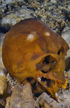 A SKELETON of a teenager more than 12,000 years old with a facial structure resembling that of an indigenous Australian is offering new clue...