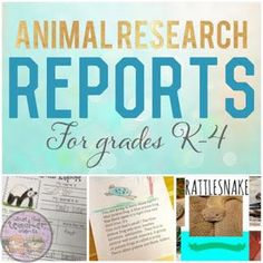 Animal research reports ideas for grades K-4. This shows examples of how to differentiate the report for different learners!