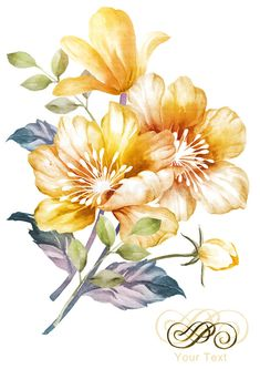 Stock Photo and Image Portfolio by Flower Images, Flower Art, Watercolor Flowers, Watercolor Paintings, Floral Printables, Plant Drawing, Cute Patterns Wallpaper, Watercolor Illustration, Illustration Flower