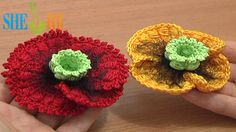 Crochet Poppy Flower Tutorial 68 Part 2 of 3 Bullion Block Stitch Flower  http://sheruknitting.com/videos-about-knitting/crochet-flower-lessons/item/511-crochet-poppy-flower.html Learn how to crochet poppy with this detailed crochet  video tutorial. The center for the poppy flower we made in crochet flower tutorial 68 part 1. In this tutorial we continue the work making four petals of double crochet stitches and bullion block stitches.