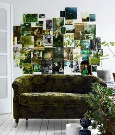 green wall collage