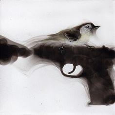 "Spazuk Exhibits Surreal New Soot Paintings in ""Smoking Guns and Feathers"" 