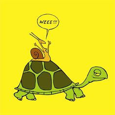 my favorite joke!  What does the snail riding on the back of a turtle say?