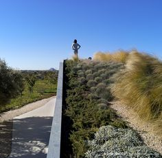 Sonia Miralles - roof path nature