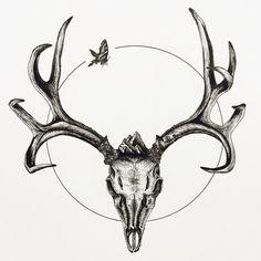 Random Shit — Mule Deer Skull with Butterfly, Ink pen on paper,. Deer Skull Drawing, Antler Drawing, Skeleton Drawings, Skull Sketch, Deer Antler Tattoos, Deer Tattoo, Deer Skull Art, Deer Skulls, Hirsch Tattoo