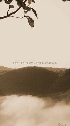 Quotes Galau, Quotes Indonesia, Caption, Love Quotes, Instagram, Movie Posters, Life, Quotes Love, Film Poster