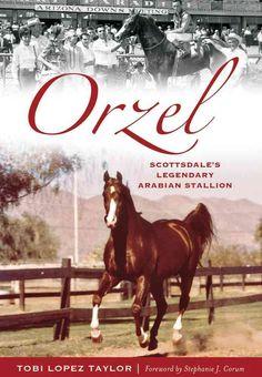 In 1967, Scottsdale's longtime Arabian horse breeder Ed Tweed embarked on a…