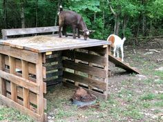 DIY Goat Playhouse & Shelter - The Little Frugal House goat house Goat Fence, Goat Playground, Playground Ideas, Goat Shelter, Sheep Shelter, Horse Shelter, Small Goat, Small Farm, Goat Shed
