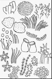 image result for underwater drawing - Coral Coloring Pages