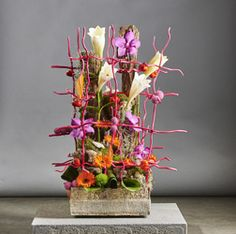 groothandel bloemen planten snijbloemen vazen manden aardewerk decoratie floristencenter exotic plants Wevelgem Brugge