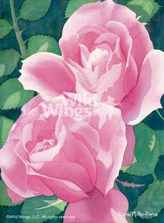 "Diana Miller-Pierce Original Watercolor Painting:""Rose Fever"" - Diana Miller-Pierce"