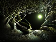 Mirkwood Magic by ~fractaldreamer on deviantART - from my Acorns and Oaks in Middle Earth - love this picture of Mirkwood, it has such a nice spooky feel