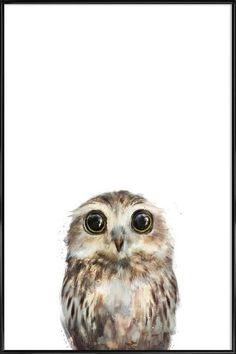 Little Owl en Affiche sous cadre standard par Amy Hamilton   JUNIQE