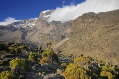 How To Climb Mount Kilimanjaro, tips for a successful ascent to Africa's highest mountain. Enjoy reaching Uhuru peak because you have chosen the right tour operator, packed the right gear, chosen the best route and acclimatized. Altitude Sickness, Mount Kilimanjaro, Tour Operator, Great Places, Climbing, Trek, Places To Visit, To Go, Challenges