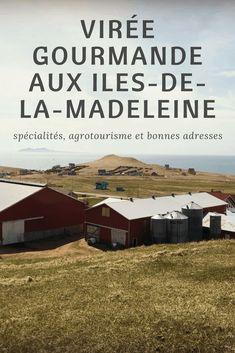 Bas Saint Laurent, Road Trip, Canada Travel, Where To Go, Routes, Laurence, Traveling, Canada Landscape, Tourist Map