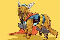 personagens-da-marvel-versao-canina-josh-lynch (11)