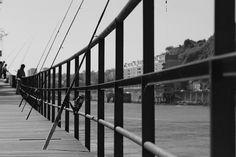 Canon EOS 1200D #gaia #porto #dslr #portugal #photographylovers #photography #nature #douro #river #like #picoftheday #nice #portugaldenorteasul #portugalemperspectiva #portugalcomefeitos #shooters_pt #exploretocreate #justgoshoot #liveauthentic #igersportugal #instadaily #instagram #igers #igersporto #igers_porto #instagood #canon #shawacademy #shawacademypt by davidvonoliveira