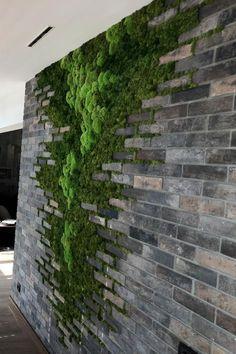 House Plants Decor, Plant Decor, Exterior Design, Interior And Exterior, Green Wall Decor, Moss Wall Art, Vertical Garden Wall, Moss Garden, Garden Deco