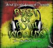 """""""Best of Both Worlds"""" The Album(2011):        We'd like to introduce you to Jae Spillz & Imain, 2 local artists from the Toronto Area, and their Label FreezeFlameInc/ThirdWorldCouncil who brings this album:        """"Best of Both Worlds"""" An Eclectic Mix/Fusion of Hip Hop/Reggae/Dancehall and a little bit Electronic...      Have a listen, check out the Title track featuring ASHA on the hook, who also takes control on """"Celebrity"""" & """"Chances"""" Local Artists, Reggae, Mixtape, How To Introduce Yourself, Toronto, Third, Hip Hop, Track, Label"""