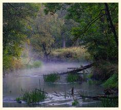 Rzeka Pilica Pilica river
