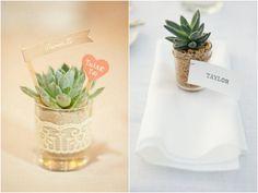 10 ideias de suculentas como lembrancinha de casamento   Wedding and Party Favors Suculents   http://marionstclaire.com/suculenta-lembrancinha-casamento