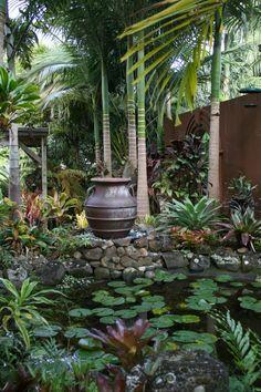 Backyard tropical ideas water garden ideas for … - tropical garden ideas Tropical Garden Design, Tropical Backyard, Tropical Landscaping, Garden Landscape Design, Front Yard Landscaping, Backyard Landscaping, Landscape Designs, Landscaping Ideas, Tropical Gardens