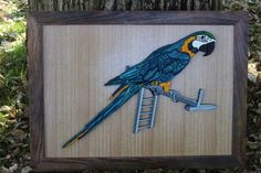 we made this one for a friend who owns a macaw