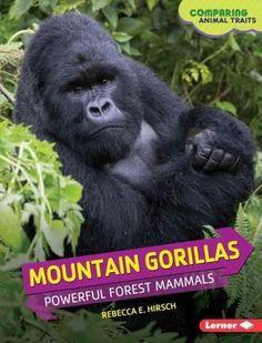 Mountain Gorillas: Powerful