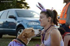 Dog and Girl 01
