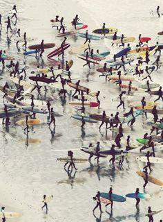 Surfer Traffic | Covet Living