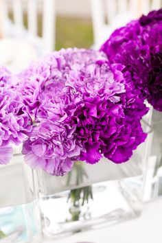 purple ombre wedding - Wedding Ideas, Wedding Trends, and Wedding Galleries Purple Flower Centerpieces, Purple Carnations, Purple Flowers, Wedding Centerpieces, Wedding Bouquets, Flower Arrangements, Wedding Decorations, Wedding Ideas, Wedding Trends
