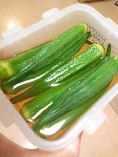 楽天が運営する楽天レシピ。ユーザーさんが投稿した「簡単オクラの常備菜」のレシピページです。冷蔵庫で冷しておくと、そうめんに添えたりご飯に乗せたりしていただけます。。オクラのおひたし。オクラ,市販の麺つゆの素,水,塩