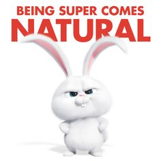 Snowball Cute Bunny Cartoon Cute Cartoon Wallpapers Cute Disney Wallpaper
