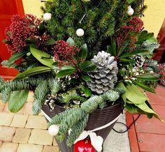 Christmas pot decoration- kültéri kaspó karácsony díszítés Plants, Google, Planters, Plant, Planting