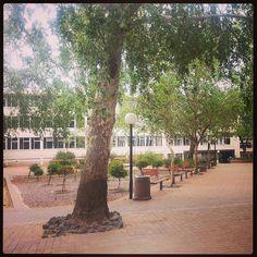 University of the Free State, #UFStoday- Bloemfontein Campus. (Photo: Lelanie de Wet)