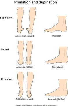 Pronation vs Supination | Sports Medicine Advisor 2003.1: Pronation and Supination: Illustration