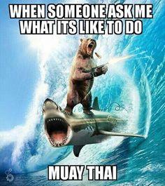 martial arts humor Muay Thai  TheStrikersLab.com,  #muaythai #martialarts tumblr