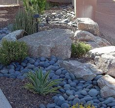 Large Mexican Pebbles in garden bed with larger stones repeated in the garden.