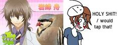 Hatoful Boyfriend: Cry wanting to tap Shuu