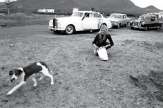 "in contrast to the photo of her onset for this same movie, here, Brigitte Bardot is shown on set of her 1968 movie, ""Shalako"" in Almeria, Spain in front of her white Rolls Royce, feeding a stray dog. it was said that she was often seen feeding stray animals. she's so pretty when she's just herself, with her hair down. vintage 1960s behind the scenes photos, vintage/antique automobiles"