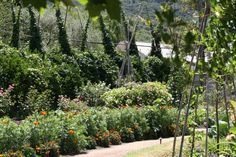 Learn about the role the gardens play in life at the ranch at our August 9th Garden Walk with Lunch.