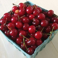 Cherry season is here! Fresh picked today.