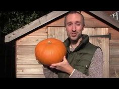 ▶ How to Grow, Cure and Store Pumpkins - YouTube