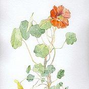 Магазин мастера Юлия Сканцева: картины цветов, натюрморт, животные, юмор, пейзаж