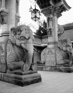 Elephants at the Berlin Zoo Entrance - Germany
