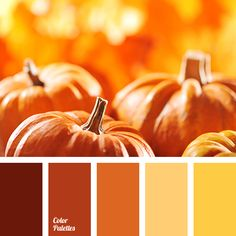 brick, bright yellow, brown, burgundy, color of pumpkin, color selection, color selection for autumn, Orange Color Palettes, pale yellow, palette for autumn, pumpkin color, saffron, shades of autumn, shades of orange, shades of yellow.