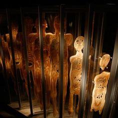 Bodies... the Exhibition - Atlanta | Premier Exhibitions