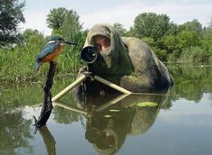These 20photos prove thata wildlife photographer is the best occupation